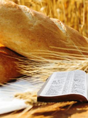 243. A vida escondida na Palavra e no Pão