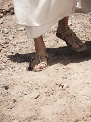 24. O Servo Sofredor (Mc 8,27-38)