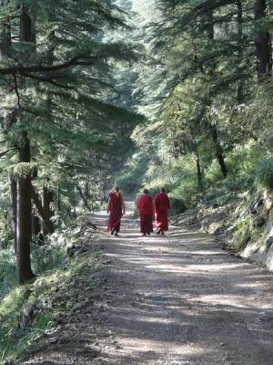 37. O monge e o forasteiro