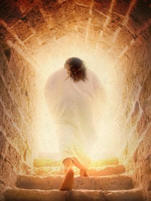 17. Como professar e pensar hoje a fé na ressurreição?