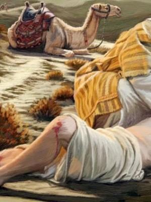 6. Reflexão para o 11º Domingo do Tempo Comum (Mt 9,36-10,8)