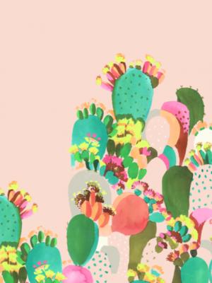 216. Flores de cactos