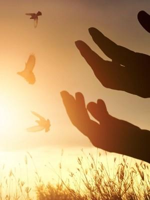 Salmo 50 - 24º Domingo do Tempo Comum Ano C