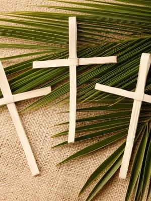 154. Reflexão para o Domingo de Ramos da Paixão do Senhor - Mt 26,14 – 27,66 (Ano A)