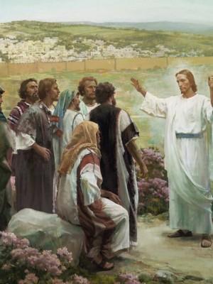 164. Reflexão para o 11º Domingo do Tempo Comum - Mt 9,36–10,8 (Ano A)